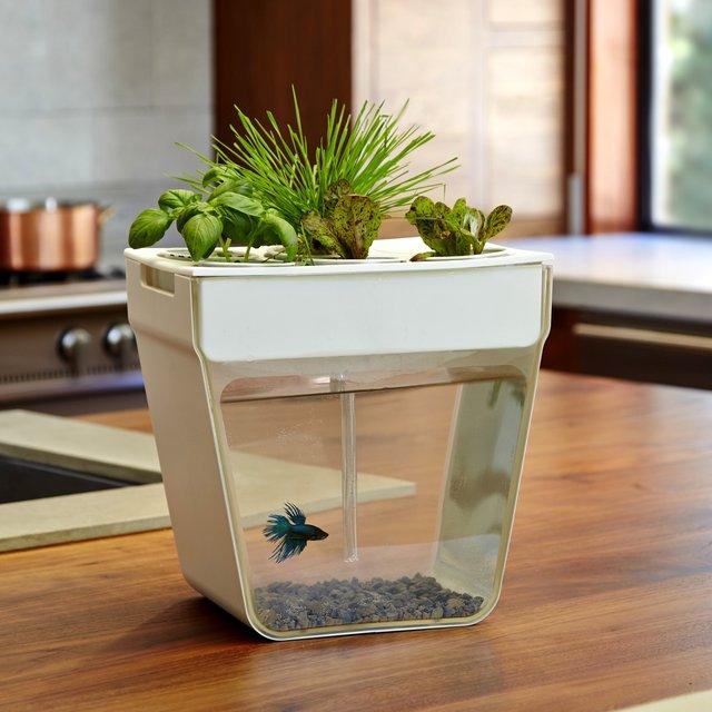 AquaFarm Home Aquaponics Garden
