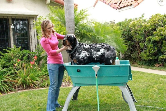 Booster-Bath-Elevated-Dog-Wash-Tub-02