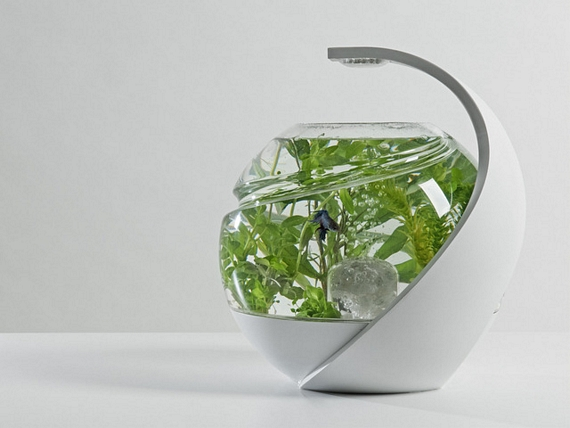 Self-Cleaning Tropical Fish Aquarium - Avo
