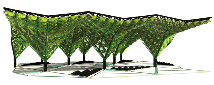 Algae Canopy Which Can Generate 4 Hectare Forest Worth of Oxygen