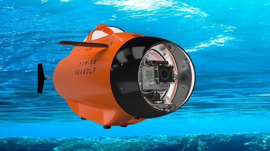Shoot Cool Underwater Videos With SeaWolf