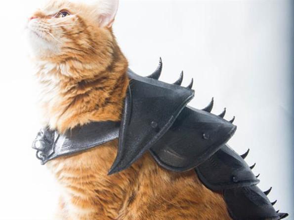 3-D Printed Cat Armor