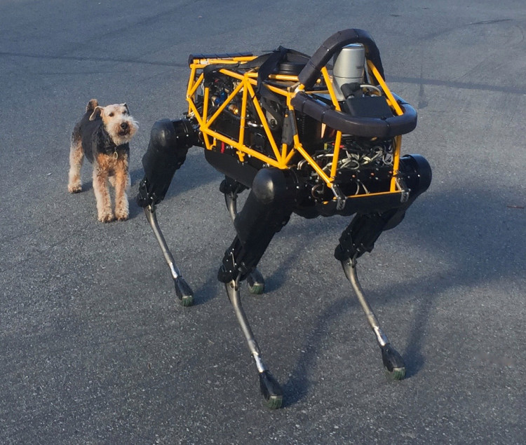 Four-Legged Boston Dynamics Robot