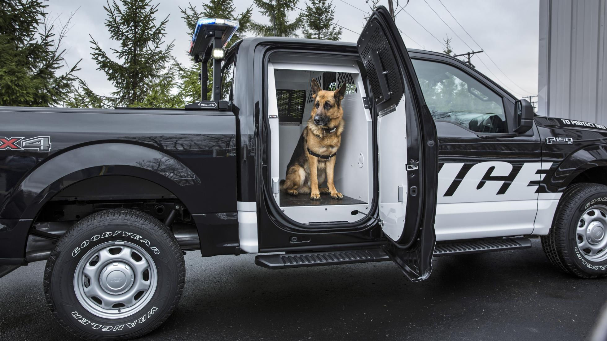 Ford's New F-150 Police Truck