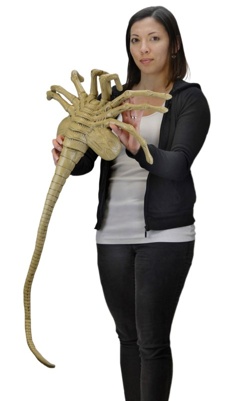 Full-Size Replica of an Alien Facehugger