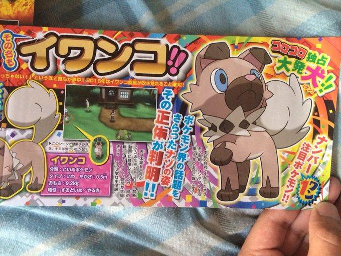 Koala And Dog POKEMON