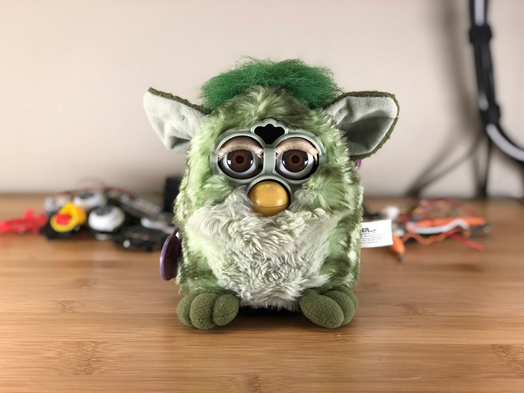 Amazon Echo Furby
